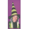 Witch Hat With Hair Child Green Strip